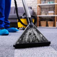 The Benefits of Carpet Cleaning Sutherland Shire